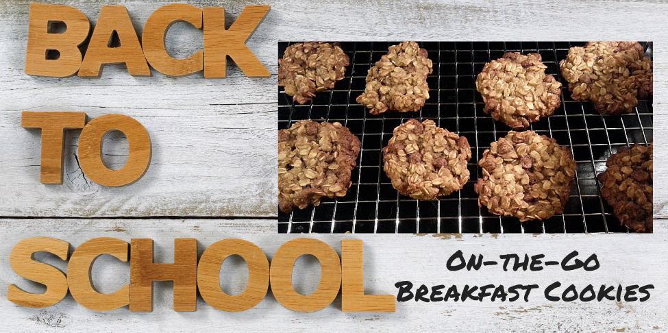 Back to School – On-the-Go Breakfast Cookies