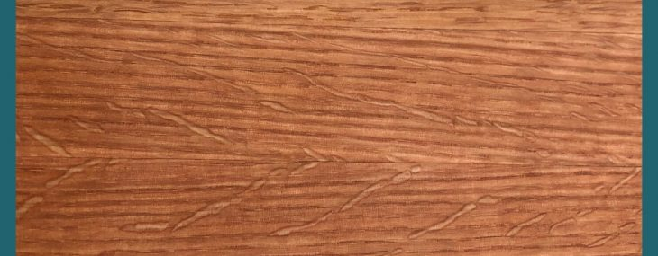 Medullary Rays Are Naturally Occurring in Oak Wood